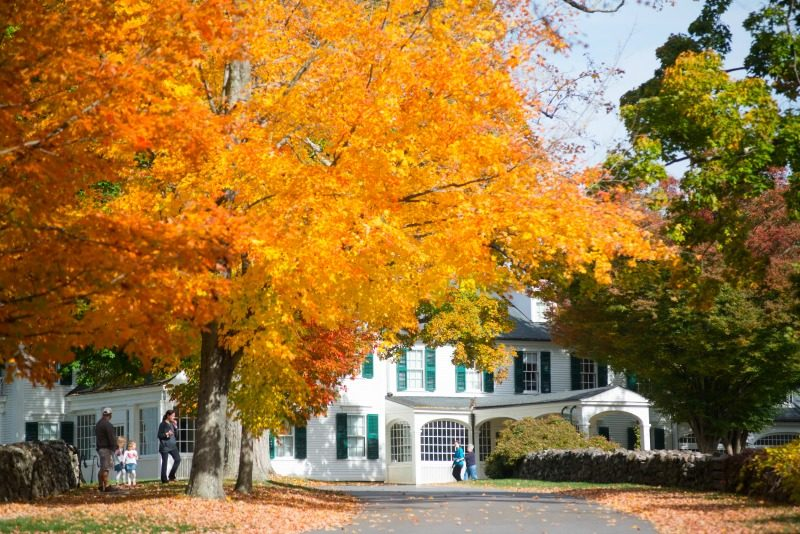 Colorful New England fall foliage highlighted outside of Hill-Stead Museum in Farmington, Connecticut USA