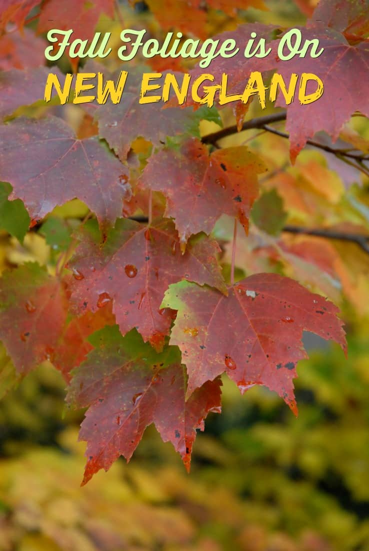 New England fall foliage is vibrant and colorful. Charming and full of surprises, this northeastern corner of the United States is a photographer's paradise in autumn. This photo by Jim Eaton.