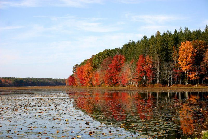 Pine Acres Pond, Goodwin State Forest, Connecticut USA - New England fall foliage