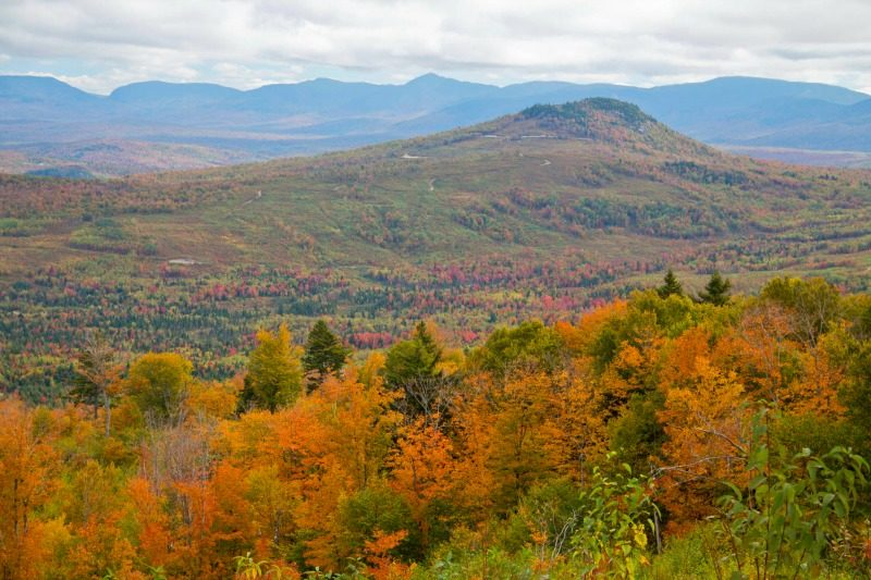 Fall foliage colors displayed in Jericho Mountain State Park, Berlin, New Hampshire USA