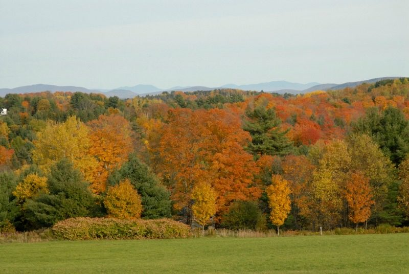Scenic fall view of autumn New England colors in Vermont USA