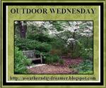 outdoor-wednesday