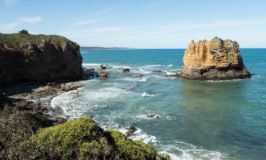 Highlights of our Great Ocean Road Self Drive in Australia