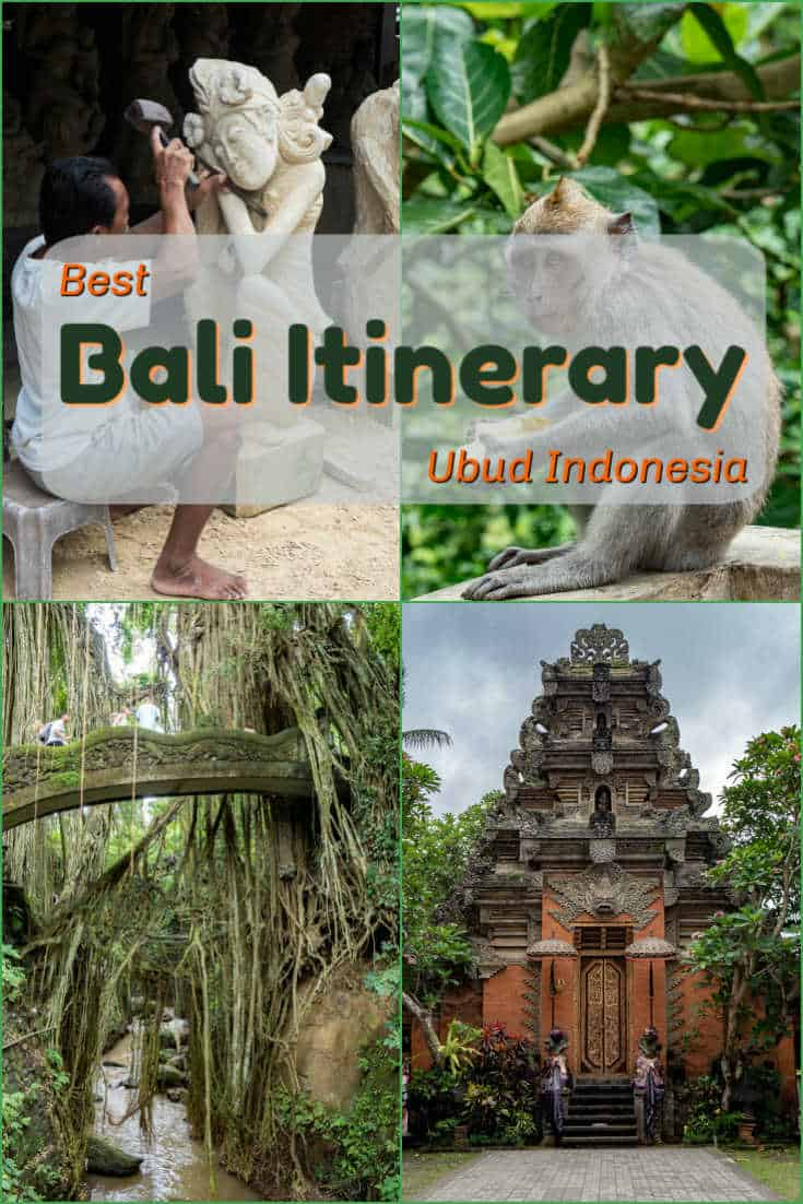 The Sacred Monkey Forest, the rice terrace, Hindu temples, and talented craftsmen are amongst the many sites we photographed in our day in Ubud on the island of Bali, Indonesia. #travel #Indonesia #Bali #ubud #monkey #riceterrace #hindutemple