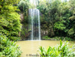 Millaa Millaa Falls outdside of Cairns, Australia