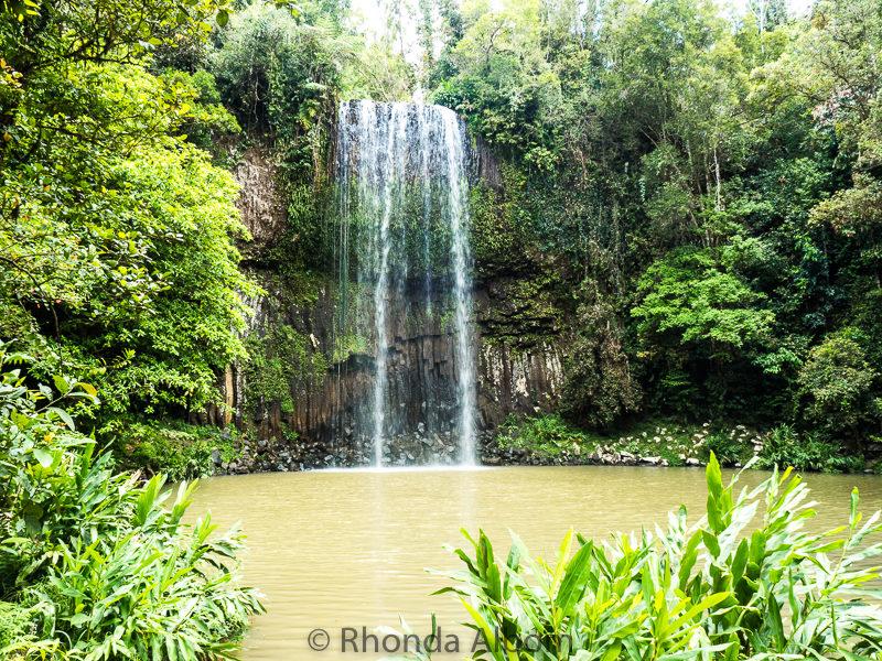 Millaa Millaa Falls outdside of Cairns, Australia