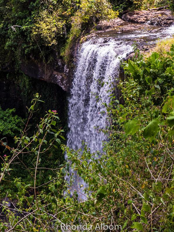 Zellie Falls oustside of Cairnes, Australia