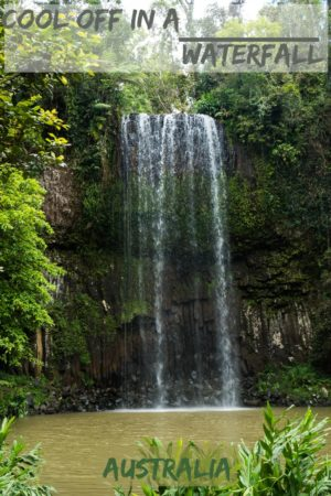 Millaa Millaa Falls outside of Cairns, Australia is just one of the fascinating things we saw in the Tablelands