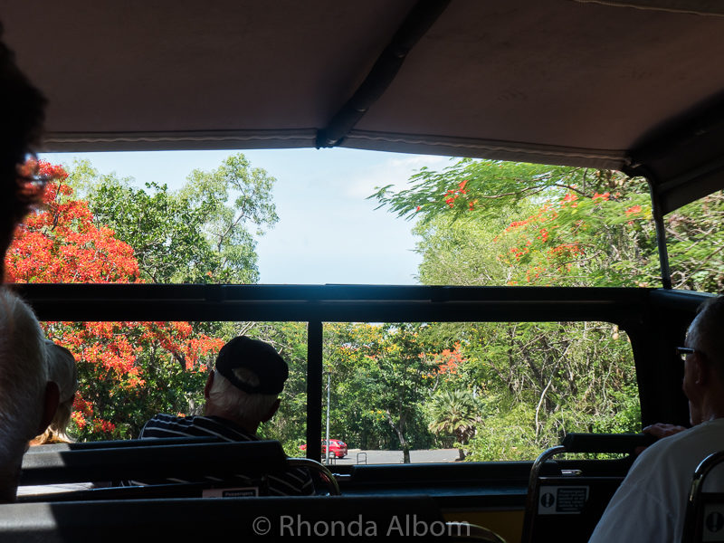 On Darwin Explorer Bus on way to East Point Milatary Museum, Darwin Australia
