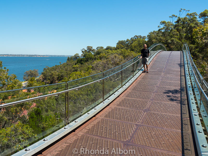 Glass bridge in Western Australia Botanic Garden, Perth