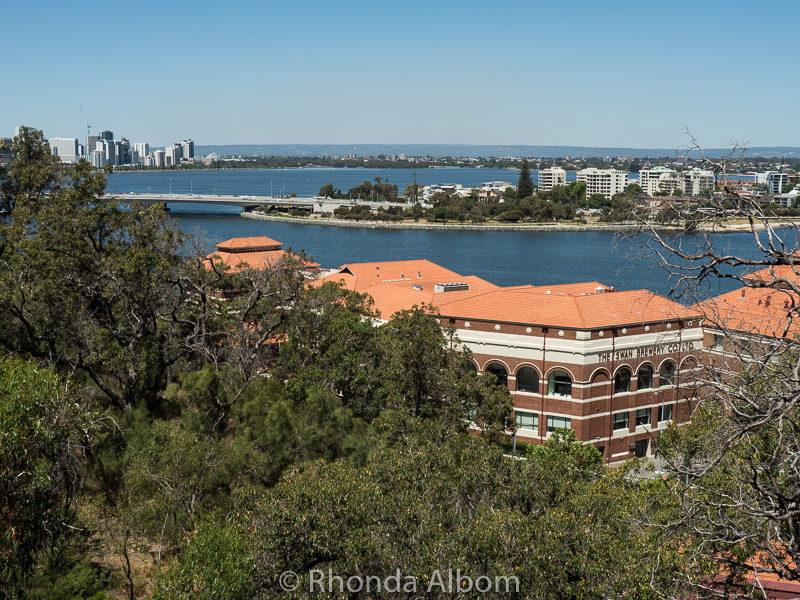 Photos of Kings Park and Botanic Gardens in Perth Australia • Albom