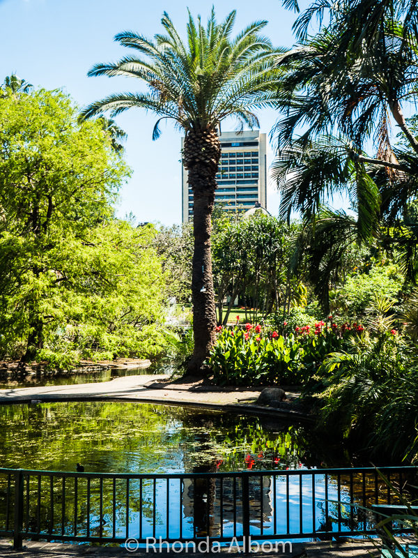 City Botanic Garden, Brisbane, Australia