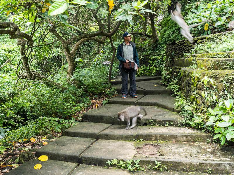 Mix and match outfit worn at Mandala Suci Wenara Wana Sacred Monkey Forest Sanctuary in Ubud Bali, Indonesia