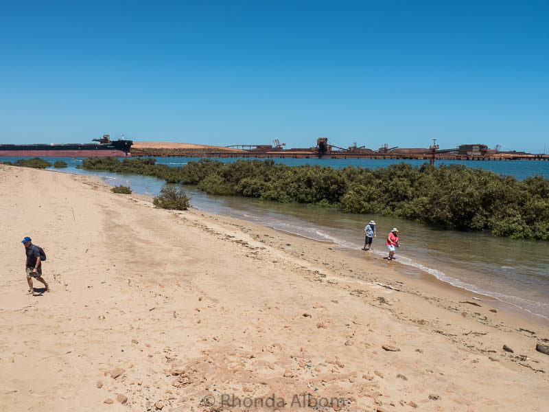 Mangroves and a beach in Port Hedland, Australia