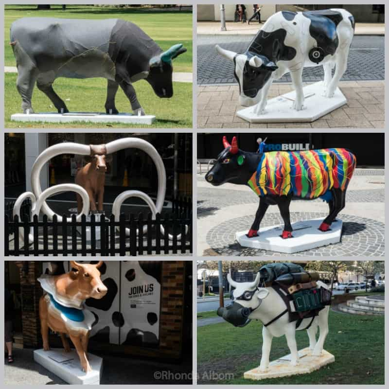 Cow Parade Perth 2016