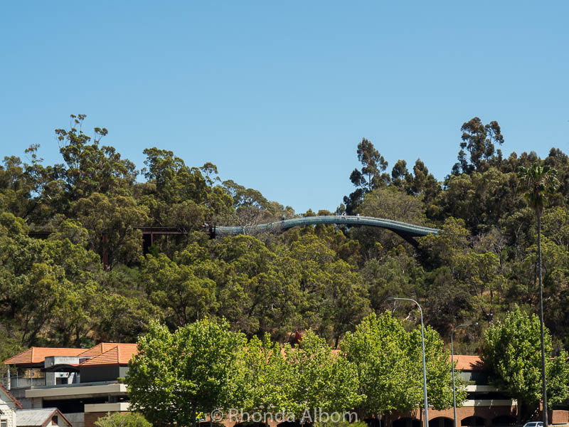 Viewing the glass bridge in Kings Park from the river cruise from Perth to Fremantle in Australia