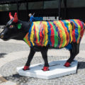 Cow Parade in Perth, Western Australia