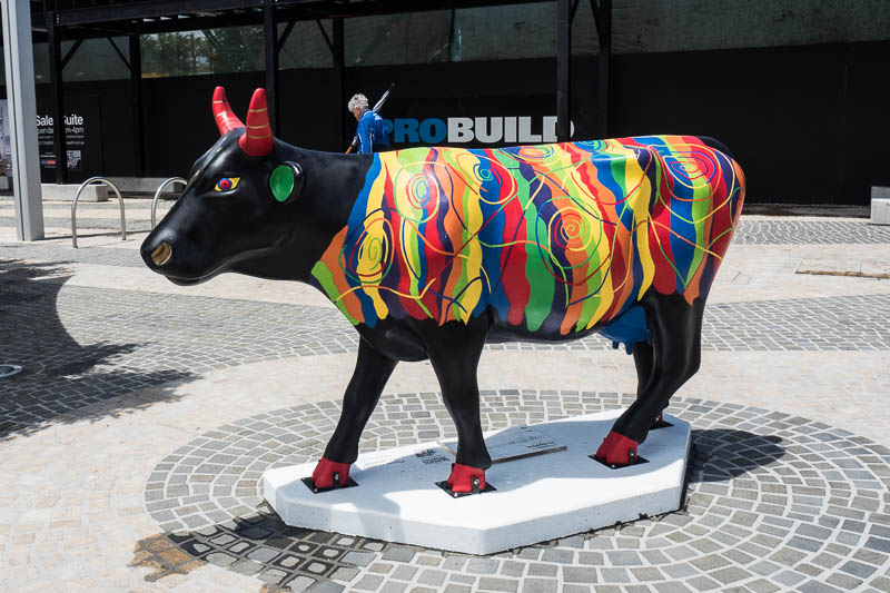 Cow Parade in Perth, Western Australia