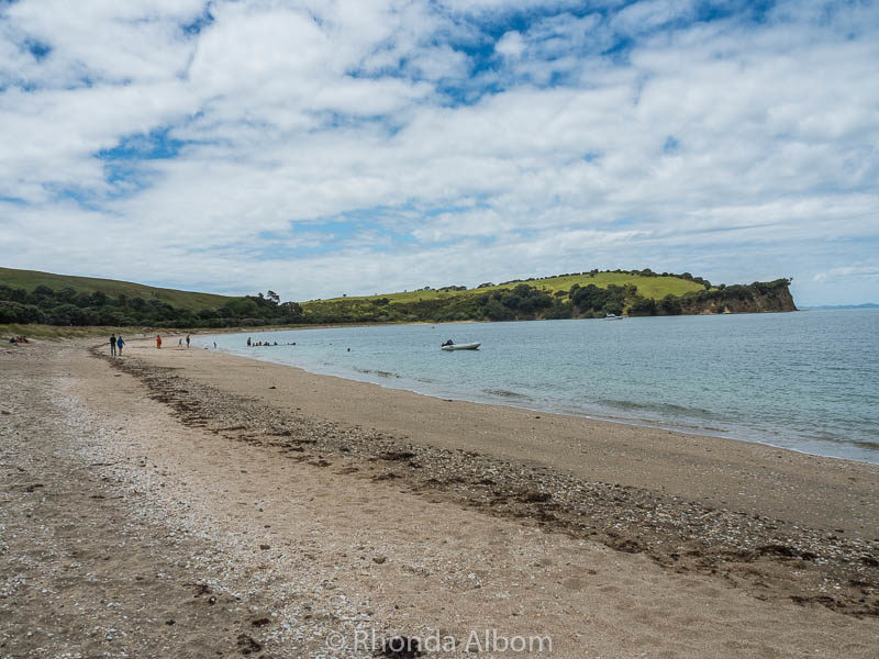 A view of Te Haruhi Beach in Shakespear Park, Auckland, New Zealand