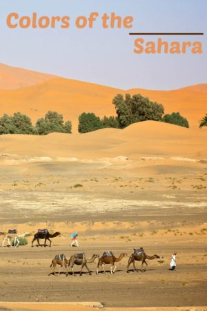 This is one of a collection of photos highlighting the colors of the Sahara desert in Morocco.