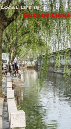 A collection of photos highlighting local life in Suzhou China