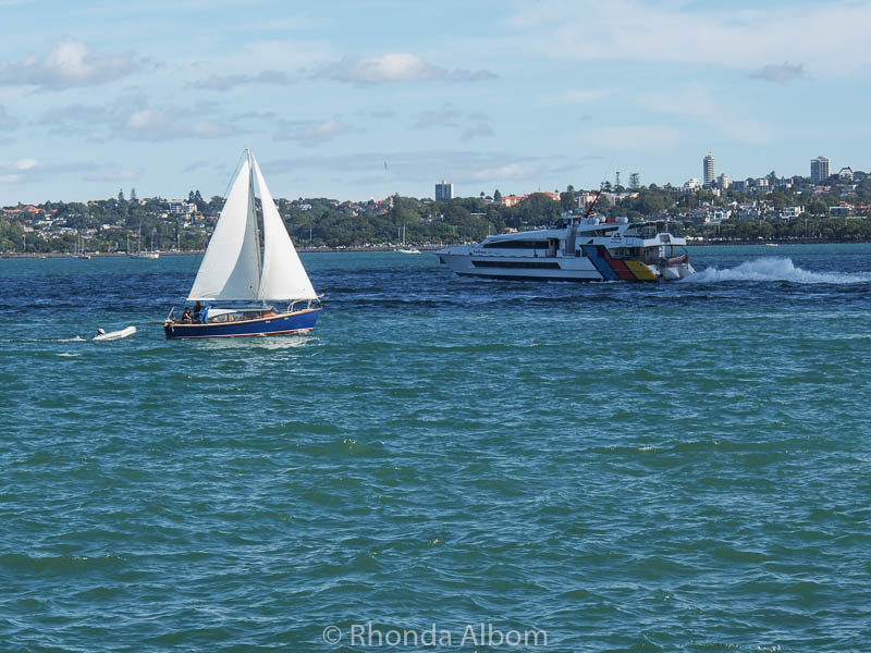 Boats seen from Devonport Wharf in Auckland New Zealand