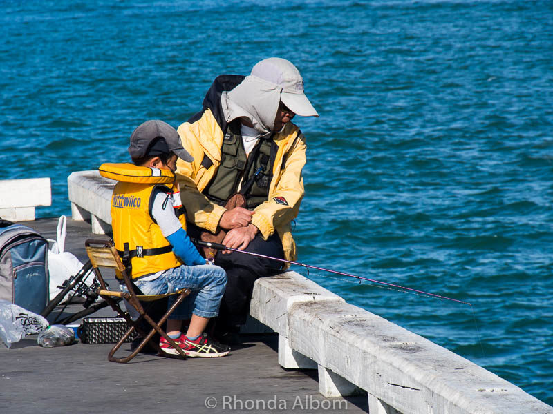 Learning to fish on Devonport Wharf in Auckland New Zealand
