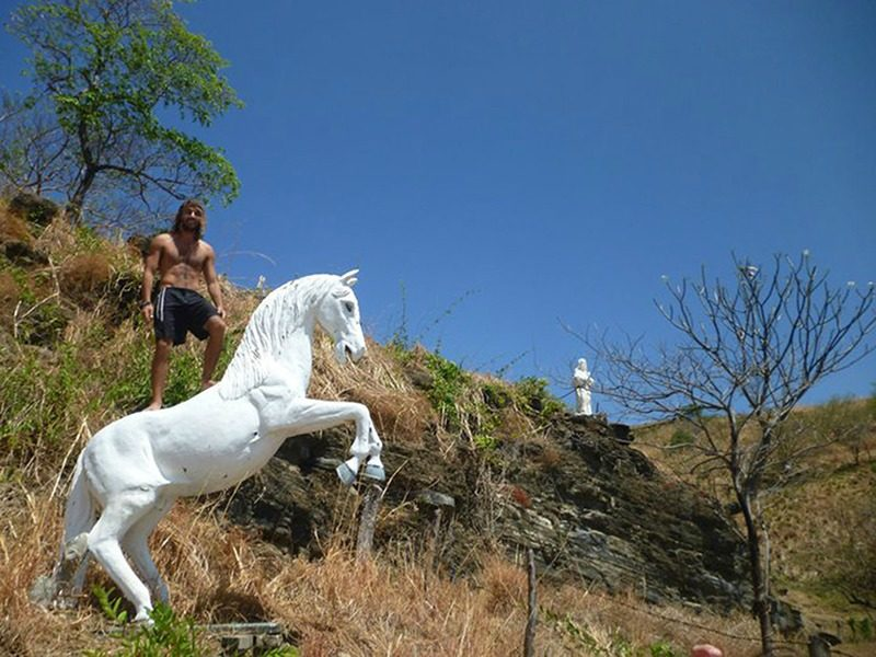 Nicaragua horse