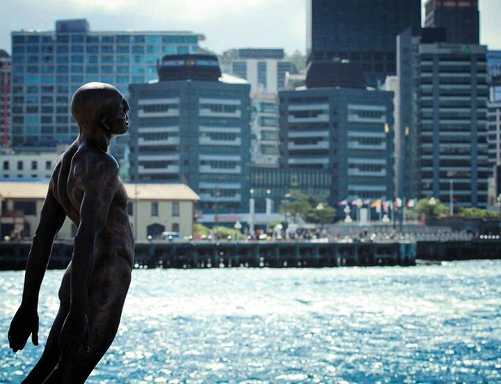 Solace of the Wind – Wellington, New Zealand
