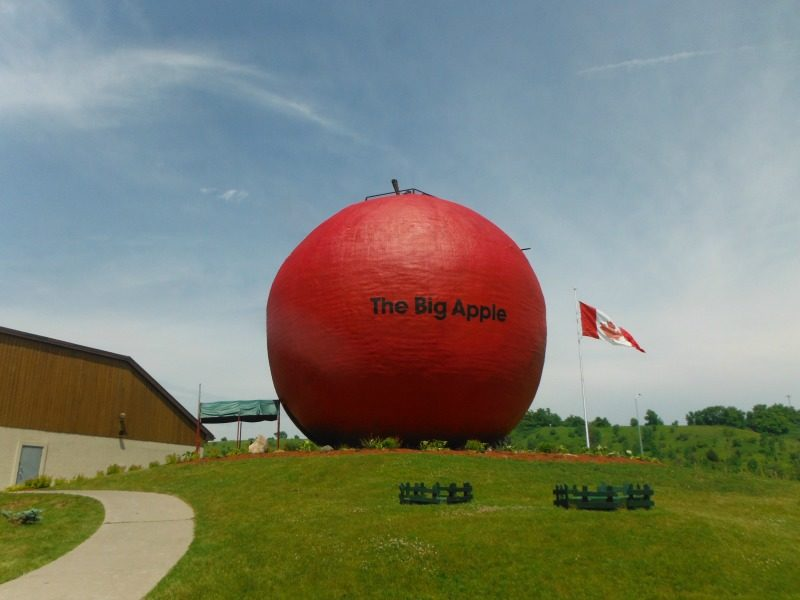 Big Apple in Ontario Canada