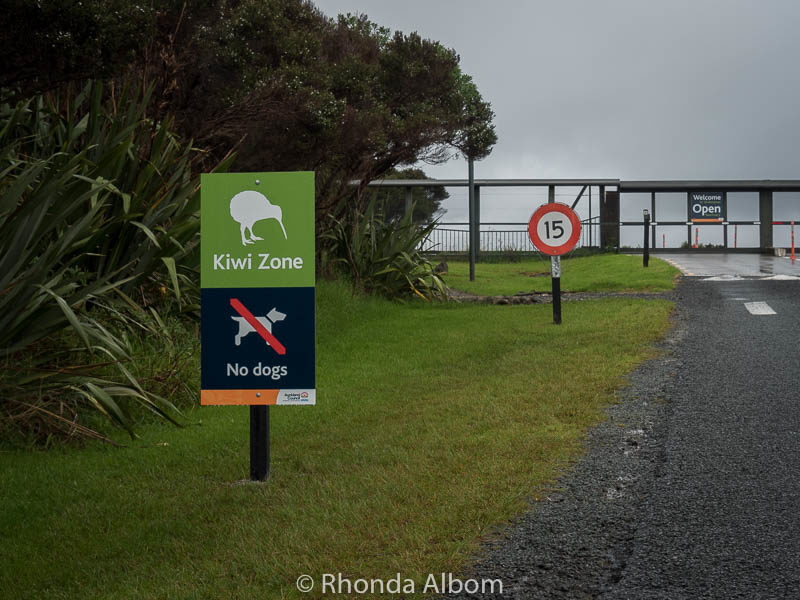 Kiwi Zone sign at Shakespear Park in Auckland New Zealand