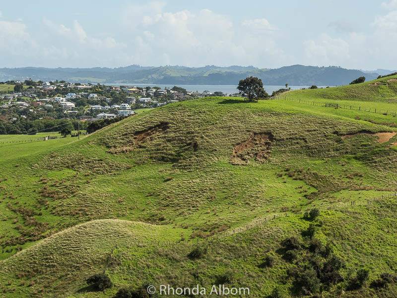 Small land slips in Shakespear Park, Auckland New Zealand