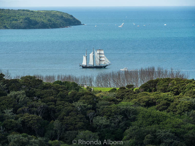 Spirit of New Zealand sailing around Shakespear Park in Auckland New Zealand