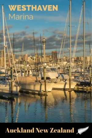 Westhaven Marina is the largest yacht marina in the Southern Hemisphere, home to New Zealand's America's Cup, and a lovely spot to watch the sunset.