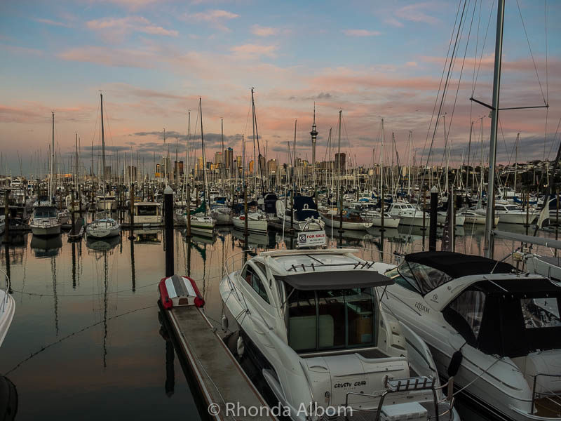 Boats at Westhaven Marina in Auckland New Zealand