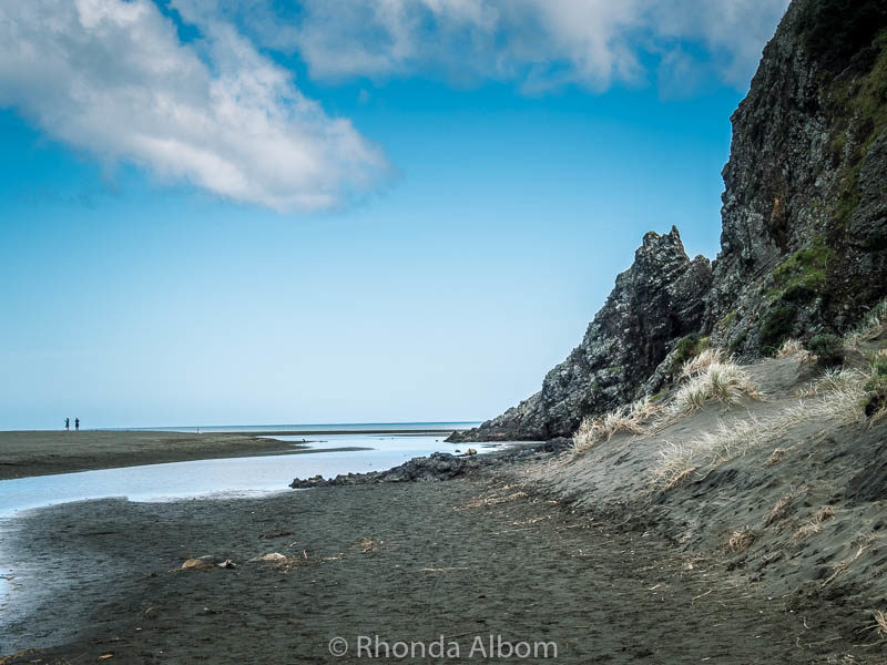 On the way to Karekare beach in Auckland New Zealand