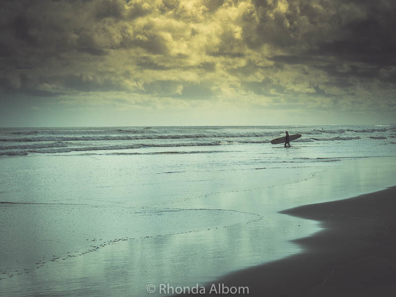 A surfer heads out at Piha, one of the black sand beaches in West Auckland