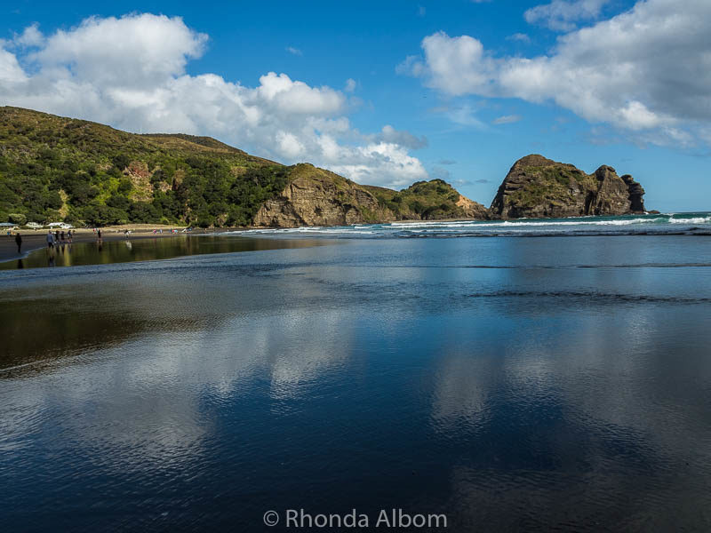 Little Piha Beach in Auckland New Zealand