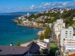 Wellington Activities: 25 Things to do in the Capital of New Zealand