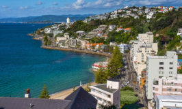 Wellington Activities: 37 Things to Do in the Capital of New Zealand