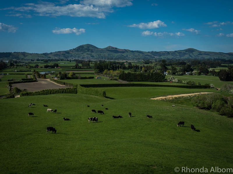 Mosgiel at the foot of Saddle Hill in New Zealand.