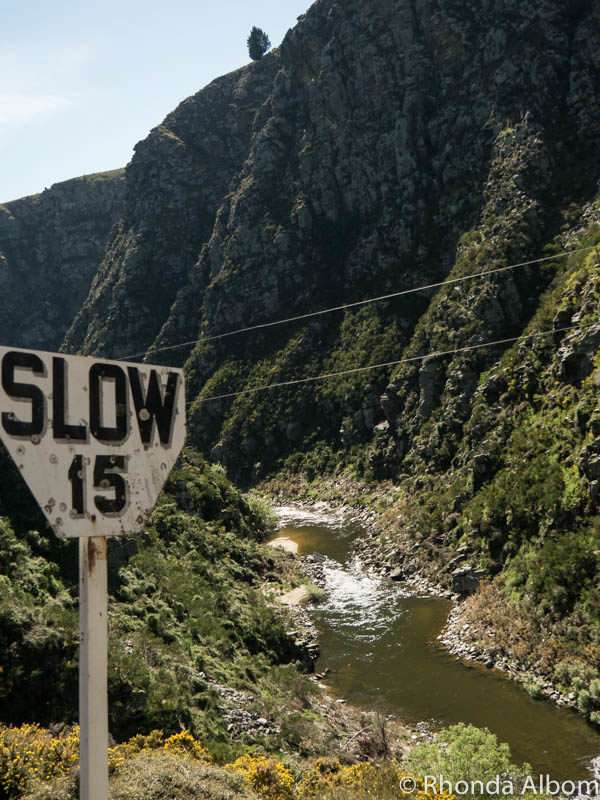A slow section of the Taieri Gorge Train track in New Zealand