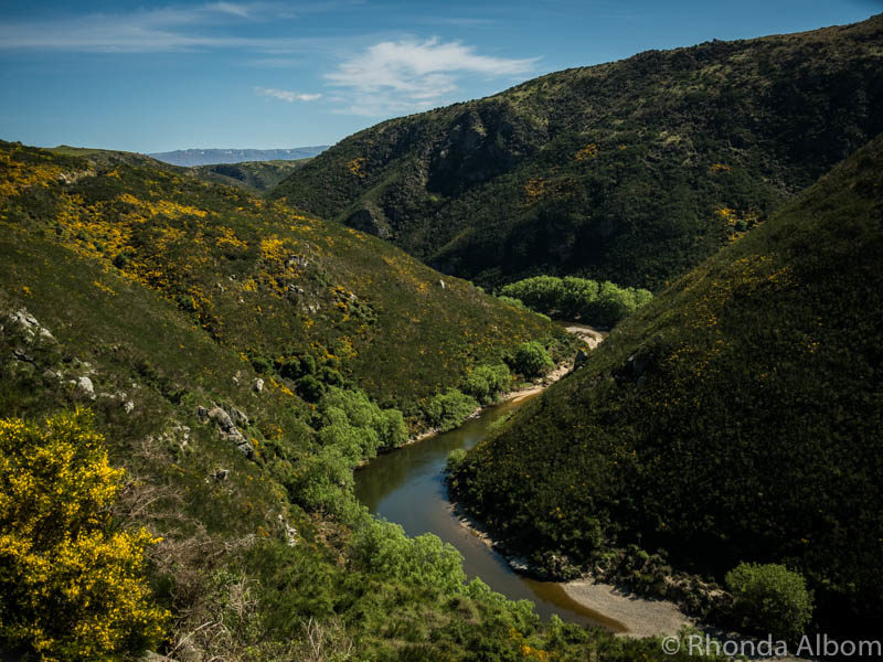 Taieri Gorge Railway in from Dunedin New Zealand