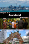 Free and nearly free things to do in Auckland New Zealand