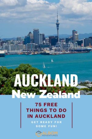 New Zealand's largest city if filled with a variety of things to do.