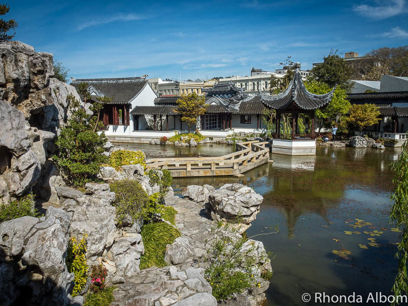 Tranquil beauty of the Dunedin Chinese Garden in New Zealand