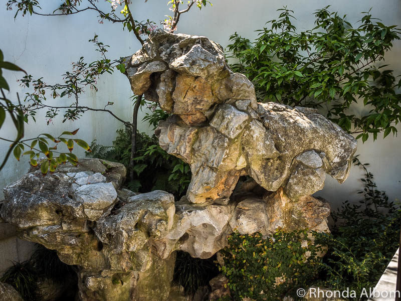 Do you see an animal in these rocks at the Dunedin Chinese Garden