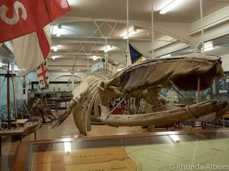 Otago Museum is one of many things to do in Dunedin New Zealand