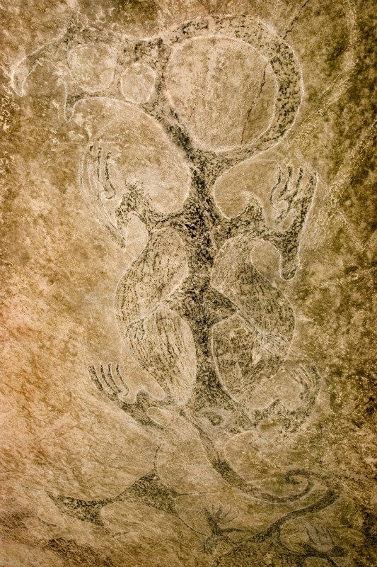 These three interlinked taniwha figures painted n a cave in New Zealand