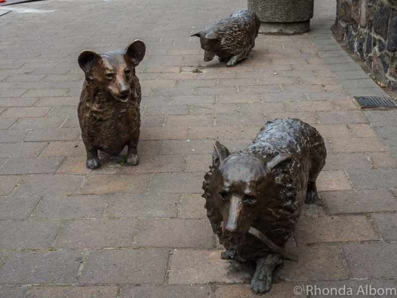 Corgi bronze statues in front of C1 Espresso cafe in Christchurch New Zealand
